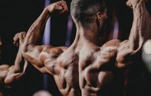 Pro bodybuilder
