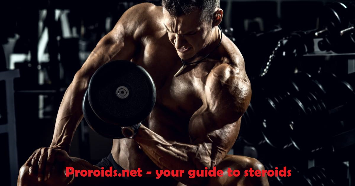 Proroids.net - beginners guide to steroids