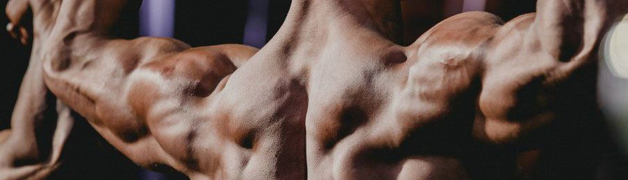 What are Steroids? Cycles, dosages and types of steroids